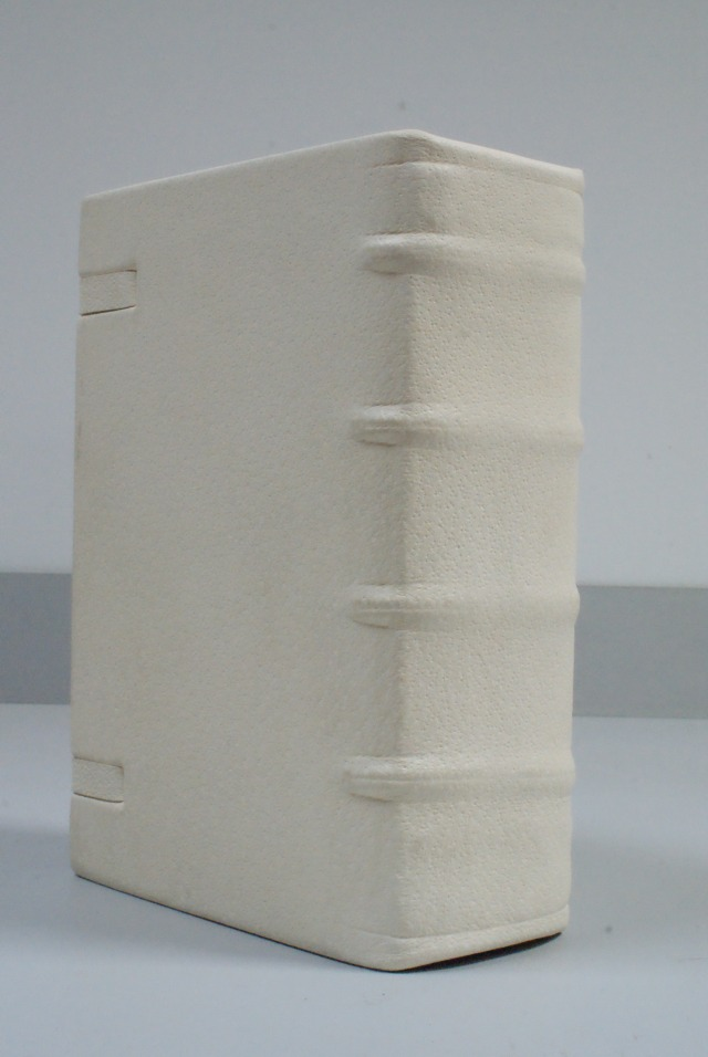(Pic 19) Spine